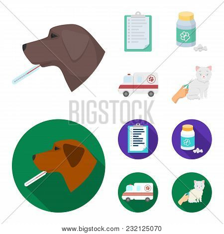 Hospital, Veterinarian, Dog, Thermometer .vet Clinic Set Collection Icons In Cartoon, Flat Style Vec