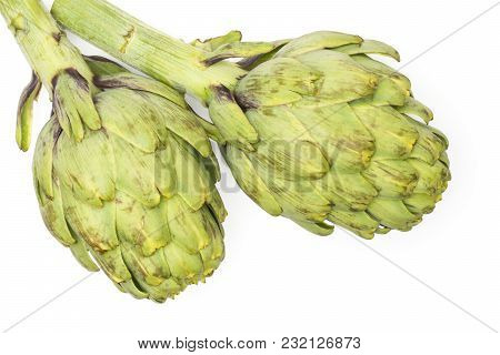 Fresh Globe Artichoke Top View Isolated On White Background Two Raw Green