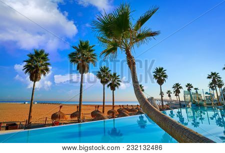Resort infinity pool in the beach with bent palm trees paradise