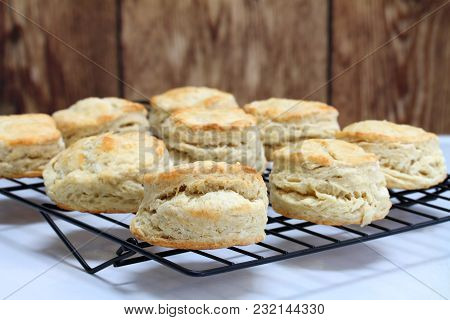 Fresh Baked Homemade Buttermilk Biscuits On A Cooking Rack.  Close Up, With Selective Focus On Front