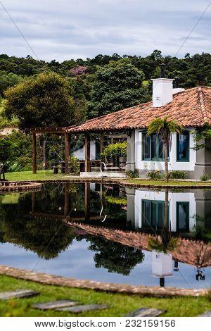 Palm Tree Next To Lake On A Cloudy Day. Cunha, Sao Paulo