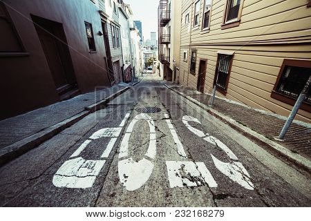 Stop Sign On Scenic Asphalt Road In Residential Areal Of San Francisco