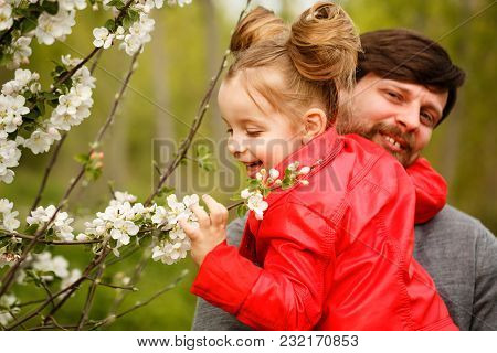 Family Time. The Father Holds A Small Daughter In A Leather Jacket. She Looks At The First Flowers I
