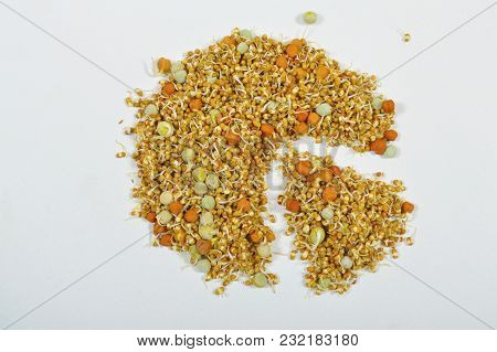 Close View Of Pie Chart Created With Sprouted Beans Isolated On White Background