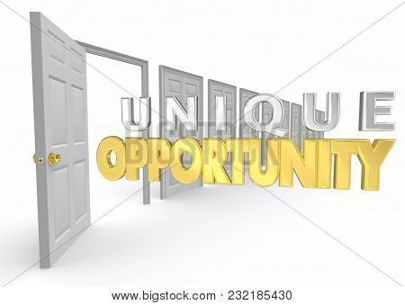 Unique Opportunity Chance Special Choice Option Door 3d Illustration