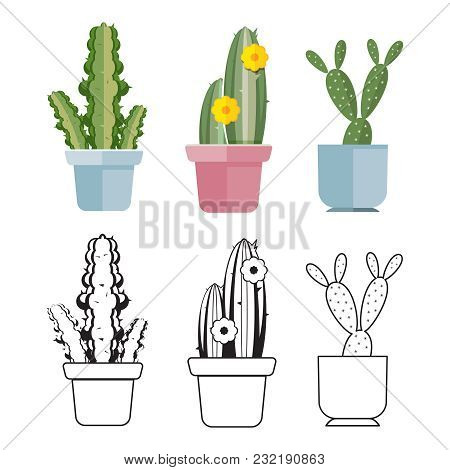 Hand Drawn And Colored Cartoon Flat Cactus Of Set. Vector Illustration