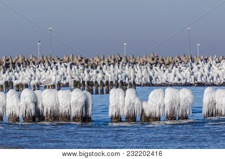 Winter On The Sea Coast - Ice On Palisades And Breakwater