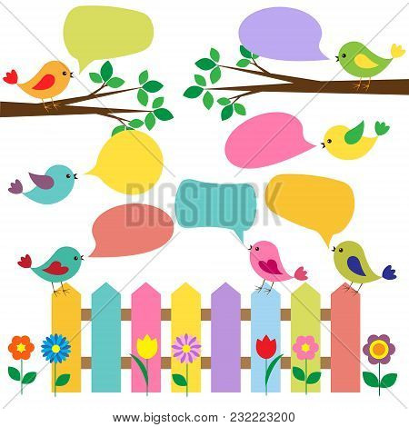 Colorful Birds With Bubbles For Speech. Vector Illustration