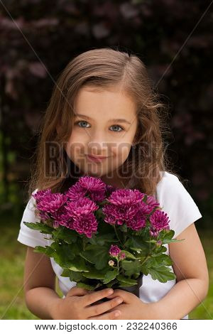 Portrait Of Cute Little Caucasian/white Girl With Fresh Bouquet Flowers Chrysanthemum In Summer Gard
