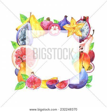 Hand Painted Square Fruit Frame. Watercolor Pineapple, Mango, Carambola, Grapefruit, Fig, Pitaya, Ma