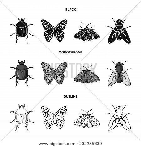 Wrecker, Parasite, Nature, Butterfly .insects Set Collection Icons In Black, Monochrome, Outline Sty