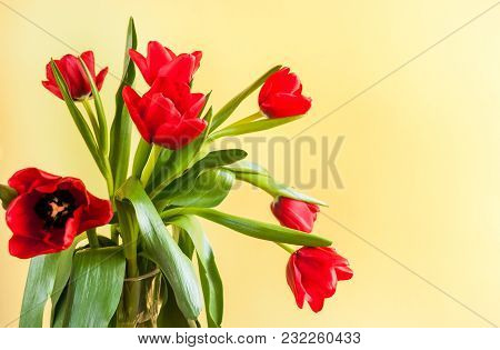 Bouquet Of Red Tulips On Yellow Background With Copy Space.