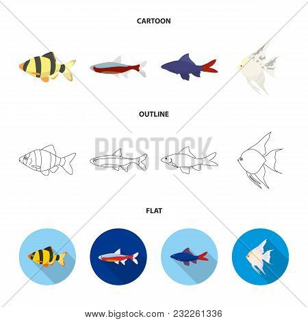 Angelfish, Common, Barbus, Neon.fish Set Collection Icons In Cartoon, Outline, Flat Style Vector Sym