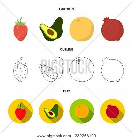 Strawberry, Berry, Avocado, Orange, Pomegranate.fruits Set Collection Icons In Cartoon, Outline, Fla