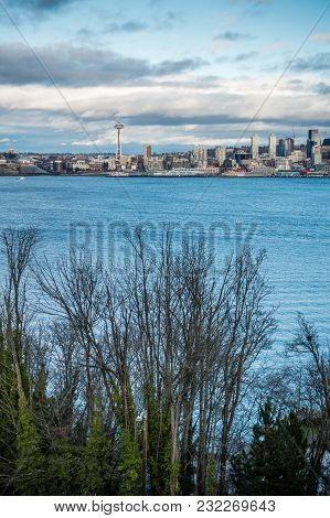 A View Of The Seattle Skyline With Trees.