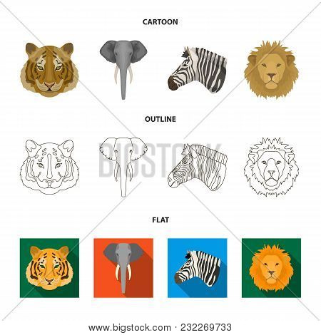 Tiger, Lion, Elephant, Zebra, Realistic Animals Set Collection Icons In Cartoon, Outline, Flat Style