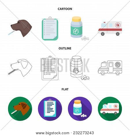 Hospital, Veterinarian, Dog, Thermometer .vet Clinic Set Collection Icons In Cartoon, Outline, Flat