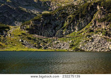A Herd Of Sheep Grazing Through The High Mountains Of Romania Next To A Glacial Lake
