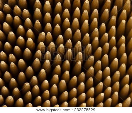 Close Up Shot Of Wooden Tooth Pick Tips