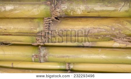 Texture Or Pattern Of A Sugarcane Stack