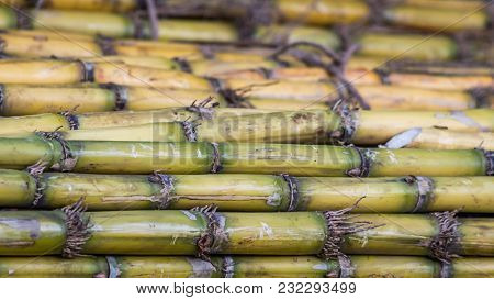 A Sugar Cane Stack Background Texture With Details
