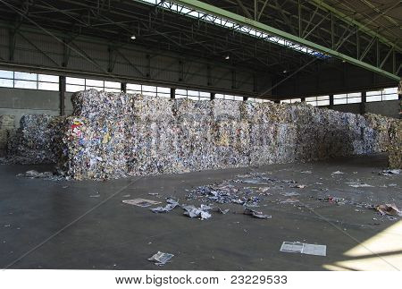 Paper And Pulp Mill - Recycle Paper