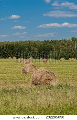 Beautiful Harmonious Landscape With Twisted Haystacks In The Field In The Summer