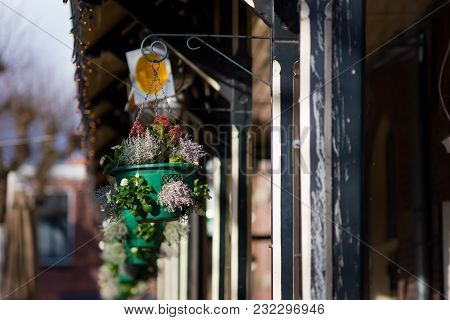 Beautiful Flowers Planted In Hanging Pots On The Teracce Of Restaurantbeautiful Flowers Planted In H
