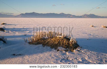 Long Shadows Fall On The Salt Flats Near West Wendover Nevada On The Border With Utah
