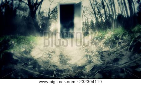The Scary Door In The Woods. Mystical Forest With Doors. A Mysterious Door With Haze.