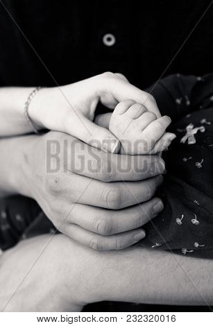 Male And Female Hands Hold A Child's Hand