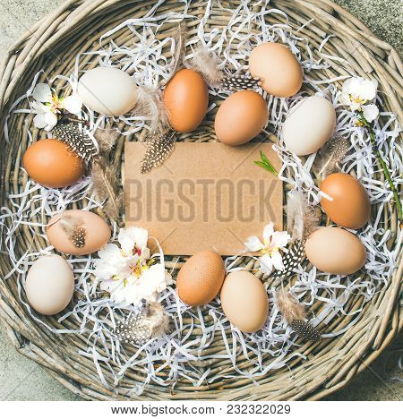 Easter Holiday Background. Flat-lay Of Natural Colored Eggs, Tender Almond Blossom Flower And Feathe