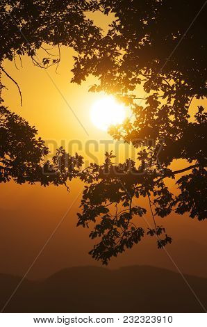 Setting Sun On Orange Sky With Leaves In Foreground And Hills In Background
