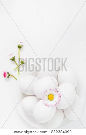 Spring Easter Background With White Eggs Daisy Flowers