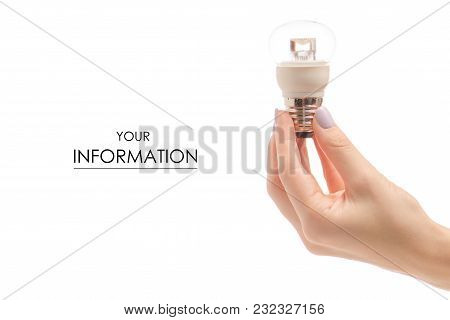 Light Bulb In Hand Pattern On White Background Isolation