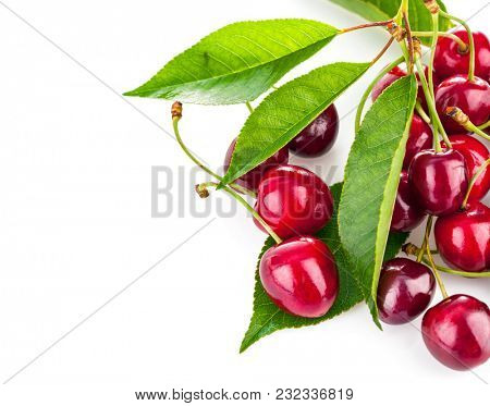 Fresh berries cherry with green leaves. Isolated on white background.