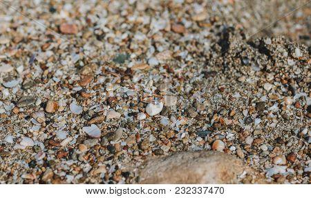 Wedding Rings On Sea Sand. Wedding Rings Close Up