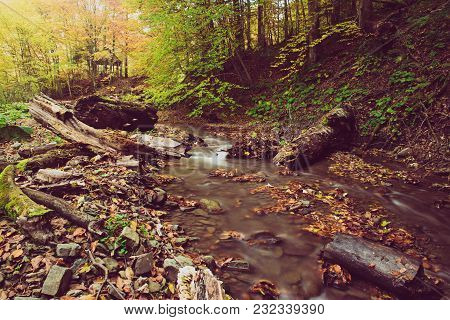 Autumn Mountain River Stream In The Rocks With Colorful Red Fallen Dry Leaves, Natural Seasonal Back