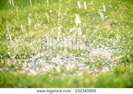 Soft Focus Of Close Up Heavy Raining On Green Grass Field In Fresh Morning Natural Background. World