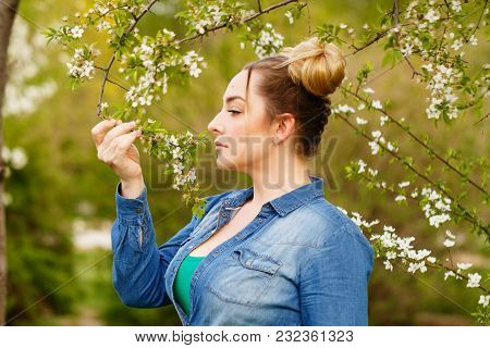 Young Attractive Girl Is Walking In The Spring Park. She Sniffs The First Cherry Blossoms.