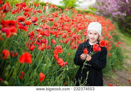 Girl In Hat And Coat Tears Flowers On Poppy Field In Spring