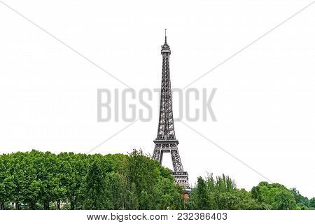 Long Shot Of The Eiffel Tower Emerging Over Treetops In Paris Isolated On White Background