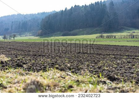 Field For Farming Agricultural Land With Earth Ground