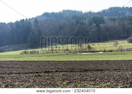 Farming Field Agriculture Landscape With Forest Background