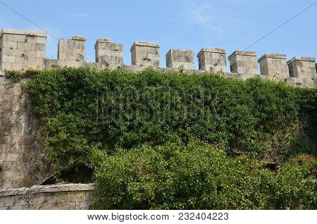 Wall Of An Old Fortress Overgrown With Green Plants And Its Merlons