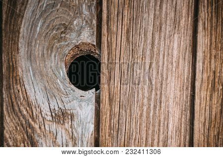 Single Dark Wood Knot In In The Wooden Textured Plank Background Of Old Aged Timber