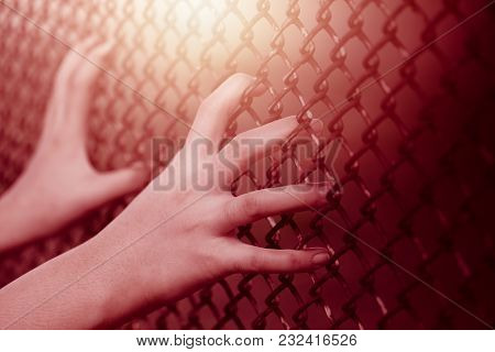 Closeup Child Girl Hand Holding Steel Cage Fence For Women No Freedom Concept