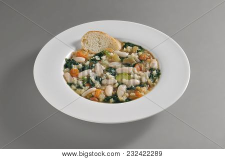 Round Dish With Tuscan Ribollita Isolated On Grey Background