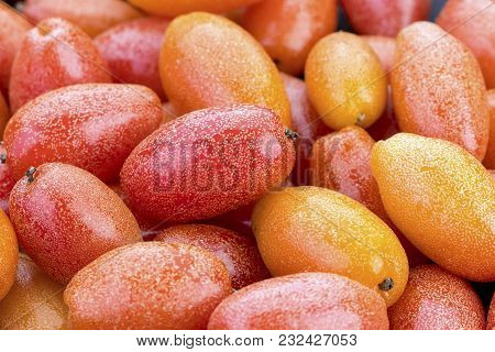 Fresh Pile Of Ripe Elaeagnus Latifolia Fruit