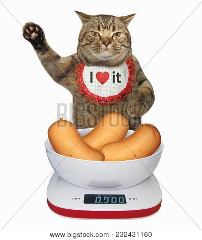 The Cat Measures The Weight Of Sausages On A Digital Food Scale. White Background.
